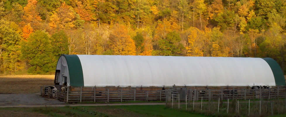 Fall Day at Seven Bridges Farm